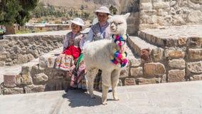 Donna peruviana con la lama e l'alpaga Immagine Stock Libera da Diritti