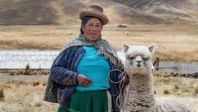 Donna peruviana con la lama e l'alpaga Fotografia Stock