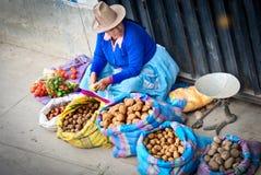 Donna peruviana sulla via Huaraz, Perù Immagine Stock