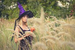 Donna piacevole che posa in costume della strega Fotografie Stock