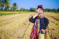 Donna preoccupata dell'agricoltore con il trasportatore del tiffin nel giacimento del riso Fotografia Stock