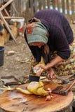 Donna rurale senior che prepara pollo all'aperto Immagine Stock Libera da Diritti
