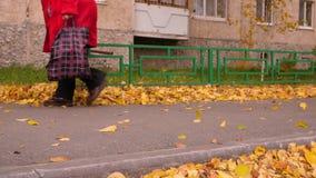 Donna senior che cammina sul sentiero per pedoni con la borsa di drogheria nel parco di autunno archivi video