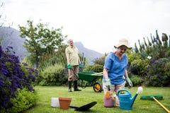 Donna senior che pianta fiore mentre uomo senior che sta con la carriola nel fondo Fotografia Stock Libera da Diritti
