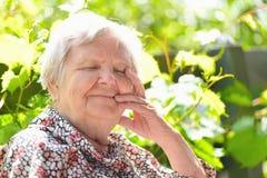 Donna senior che sorride e che sogna Fotografia Stock Libera da Diritti