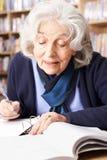 Donna senior che studia nella biblioteca Immagine Stock Libera da Diritti