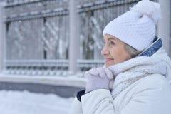 Donna senior nell'inverno gelido Fotografia Stock