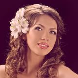Donna sensuale di bellezza Fotografia Stock