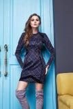 Donna sexy di stile di modo di trucco dell'abbigliamento del vestito da bellezza Immagine Stock Libera da Diritti