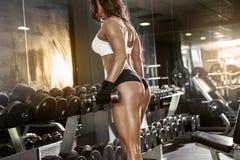 Donna sexy piacevole che fa allenamento con le teste di legno Fotografia Stock Libera da Diritti