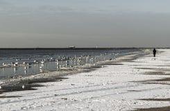 Donna sola che cammina lungo la spiaggia Immagine Stock
