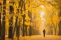 Donna sola che cammina nel parco un giorno nebbioso di autunno Donna sola che gode del paesaggio della natura in autunno Immagini Stock