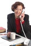 Donna sorridente 700 di affari Fotografie Stock Libere da Diritti