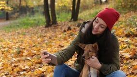 Donna sorridente con il cane che prende selfie in autunno stock footage