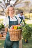 Donna sorridente dell'agricoltore che tiene un canestro di verdure Immagine Stock