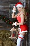 Donna sorridente di Santa vicino all'albero di Natale Fotografia Stock