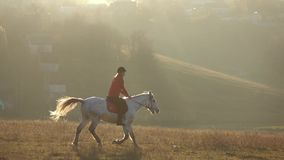 Donna su un'aria aperta del cavallo nel campo Movimento lento stock footage