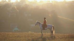 Donna su un cavallo all'aperto femminile nel campo Movimento lento Vista laterale stock footage