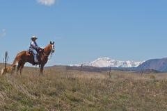 Donna sul horseback con il cane Immagine Stock