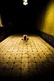 Donna sul pavimento fotografia stock libera da diritti