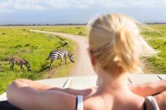 Donna sul safari africano della fauna selvatica Immagini Stock