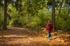 Donna sull'aumento di autunno Fotografia Stock
