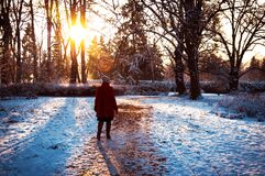 Donna sulla mattina di inverno Fotografie Stock