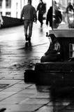Donna sulle vie che elemosina i soldi in Norvegia Fotografie Stock