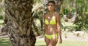 Donna sveglia in bikini che sta nel parco tropicale archivi video