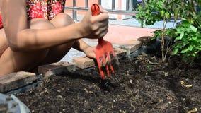 Donna tailandese che fa il giardinaggio all'orto in Camera archivi video
