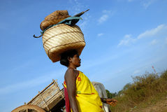 Donna tribale del Orissa al servizio settimanale Immagini Stock