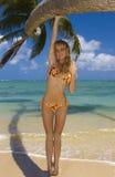 donna tropicale del bikini della spiaggia Fotografia Stock Libera da Diritti