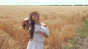 Donna in vestito bianco che sta in orecchie del grano della tenuta del campo stock footage