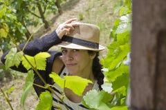 Donna in wineyard Immagini Stock Libere da Diritti