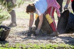 Donne agricoltori durante la campagna di oliva in un campo di oliva t Fotografia Stock Libera da Diritti