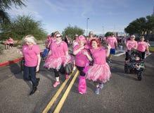 Donne allegre nella passeggiata del cancro al seno immagini stock