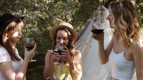Donne attraenti, amiche su un picnic all'aperto Celebrando e tintinnio con i vetri di vino Alcool bevente lento stock footage