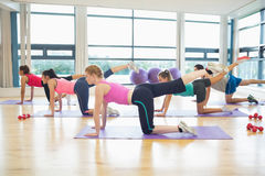 Donne che allungano sulle stuoie alla classe di yoga Immagine Stock Libera da Diritti