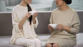Donne che bevono tè e che comunicano, madre di visita della figlia, comodità domestica stock footage