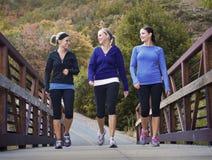 Donne che camminano insieme Immagini Stock Libere da Diritti