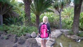 Donne che camminano nel parco tropicale video d archivio