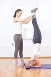Donne che fanno esercitazione di yoga alla ginnastica Immagine Stock