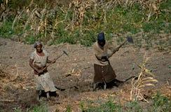 Donne che lavorano ad un progetto di ricostruzione, Angola Fotografie Stock