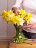 Donne che organizzano i fiori Immagine Stock
