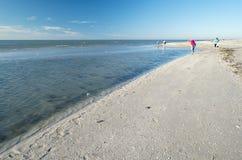 Donne che raccolgono le conchiglie su una spiaggia #1 immagini stock libere da diritti