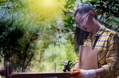Donne che stanno costruttore che indossa il lavoratore controllato della camicia del cantiere che martella chiodo nel di legno fotografia stock libera da diritti