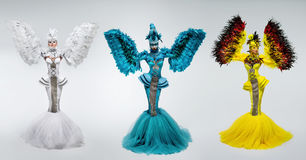 Donne in costume di fantasia con le maniche della piuma fotografia stock libera da diritti