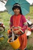 Donne del gruppo etnico di Palong che raccoglie i peperoncini nei campi Immagine Stock Libera da Diritti