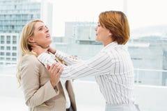 Donne di affari che hanno una lotta violenta in ufficio Immagini Stock Libere da Diritti
