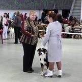 Donne e cane sull'esposizione canina Immagini Stock